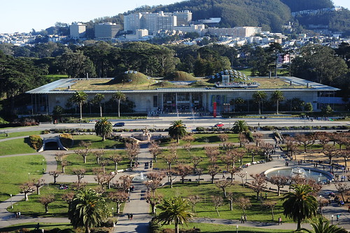 View from de young Museum