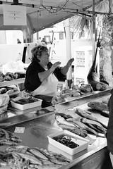 Fish market in Marsaxlokk, Malta