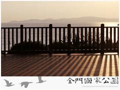 慈堤觀景平台