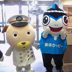 駅長犬と勝浦カッピー