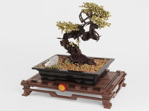 Plastic Bonsai Tree (Indoors)
