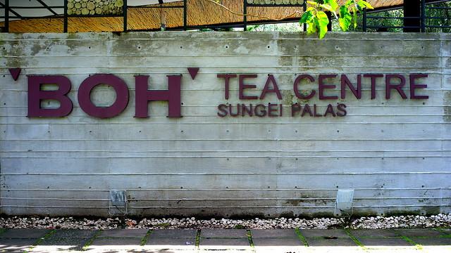 'BOH' Tea CentreSungei Palas