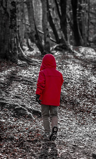 The Boy in the Red Coat