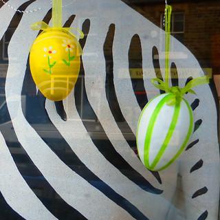 zebra eggs
