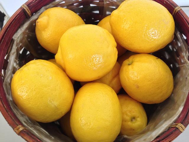 Operacion Limon Lemons