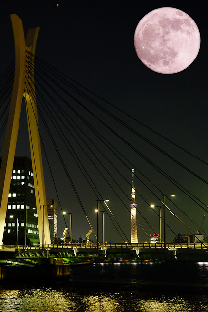 Mars and Moon -01 Tokyo Sky