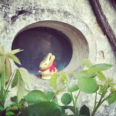 Joyeuses Pâques ! Zalig Pasen! Happy Easter! #lagrossetalle #pasen #vakantie #frankrijk