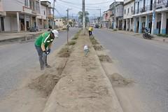 En avenida Carlos Alberto Aray continua limpieza de bordillos y parterres