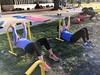 Circuit training at Body Buster  . www.BodyBusterFitness.com  #Toronto #Etobicoke #Mississauga #PortCredit #HighPark #Danforth #BodyBusted #BodyBusterFitness #BodyBuster #BodyBusterBootcamp  #FitnessBootcamp #BootcampFitness #Bootcamp #Bootcamps  #Toronto