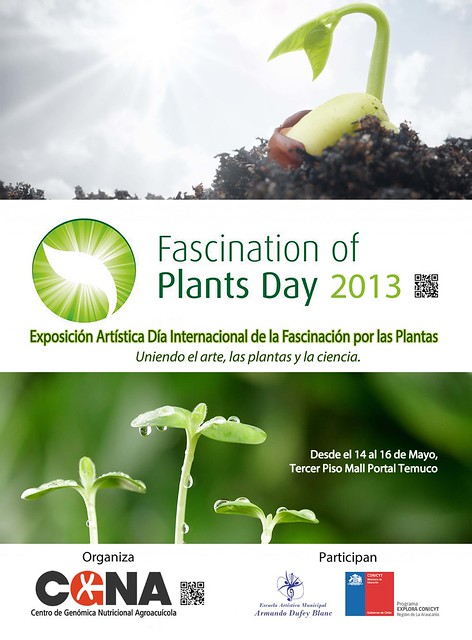 Fascination of Plants Day en Chile AFICHE