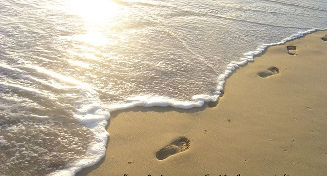 Footsteps  of   Beach