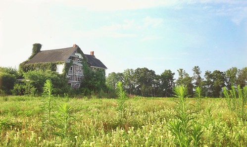 I almost got bit by a snake taking this picture of an abandoned house in a field