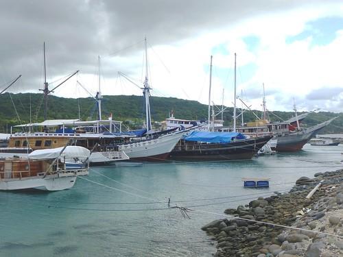 Sulawesi13-Bira-Tour-Port (8)
