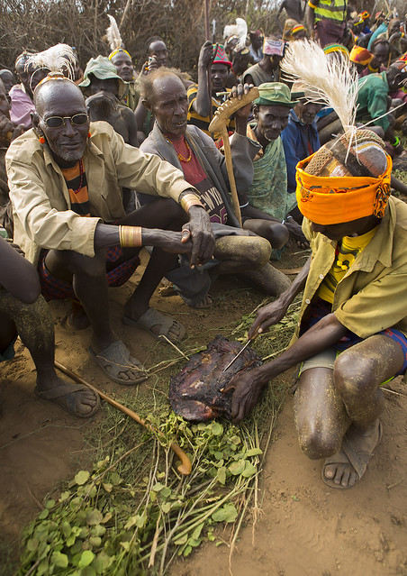Dassanech Tribe Warriors Sharing Cow Meat During A Ceremony, Omorate, Omo Valley, Ethiopia