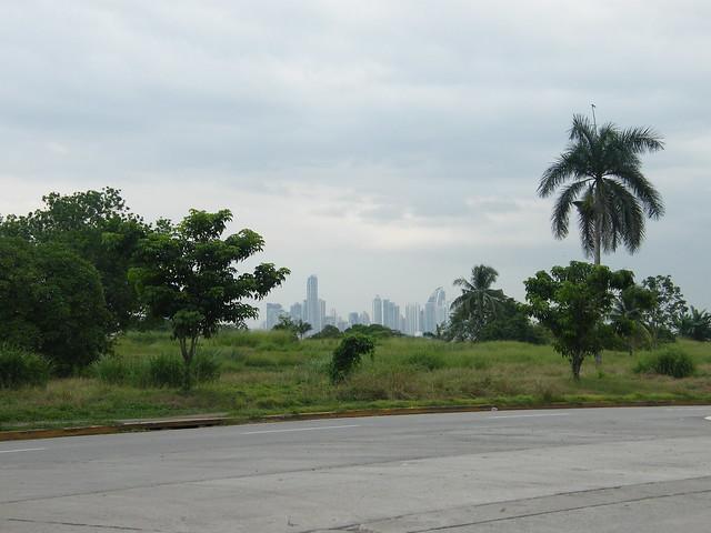 Panama City and Palms