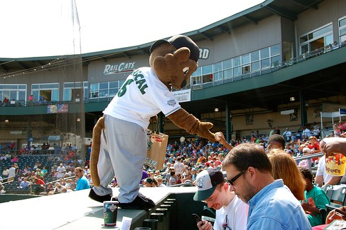 Rascal, the Railcats mascot