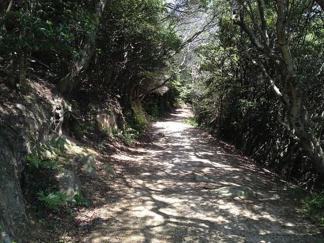 20130526六甲山歩Course4鉢伏山~須磨アルプス 010