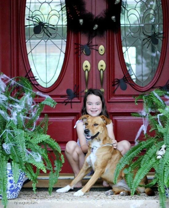 Hi Sugarplum | Halloween Spider Porch