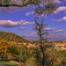 Small photo of Indian summer in Prague