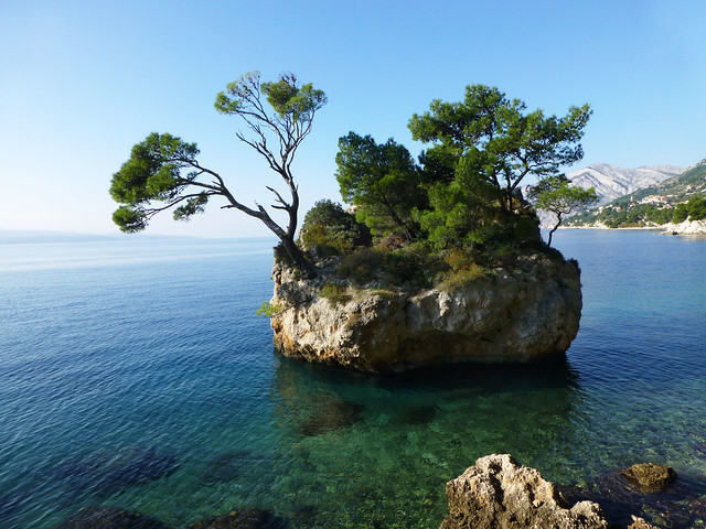 the teeniest island