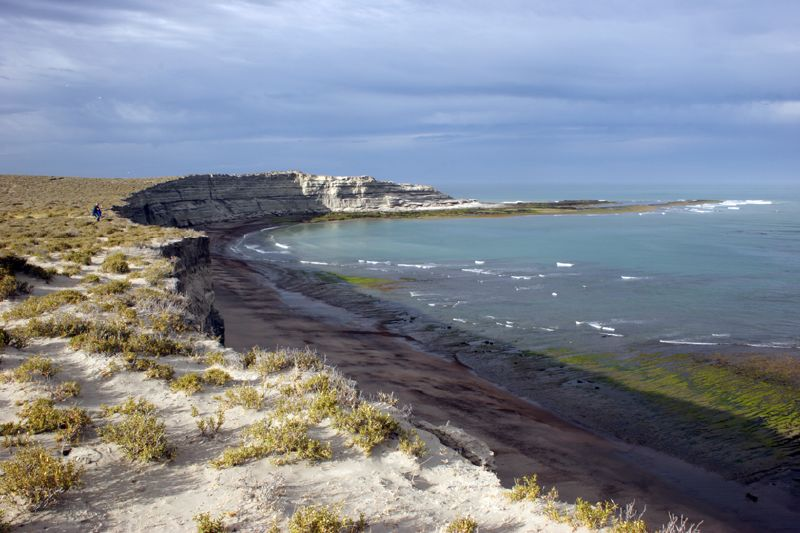 15. Costa desértica en la Península Valdés. Autor, Ostrosky Photos