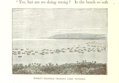 Image taken from page 262 of 'Great Explorers of Africa. With illustrations and map'