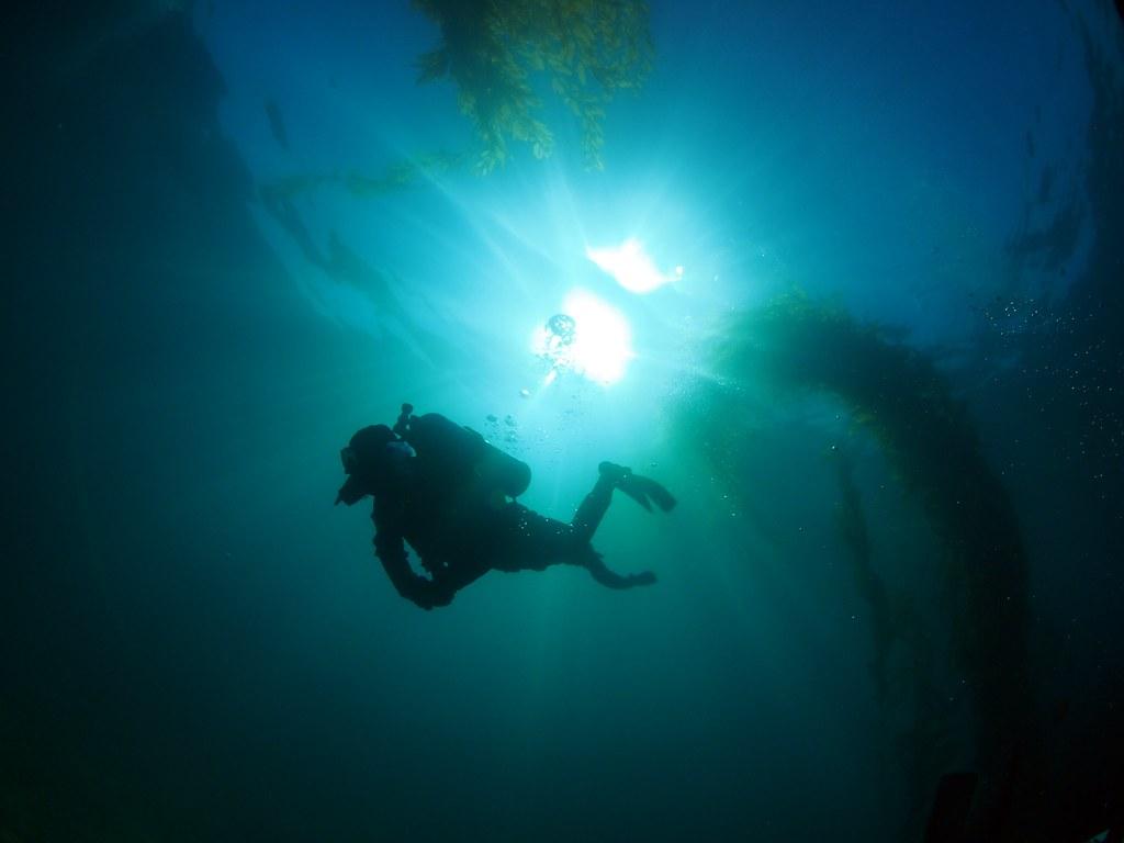 Lexus Santa Barbara >> California Underwater Wide Angle - ClubLexus - Lexus Forum ...