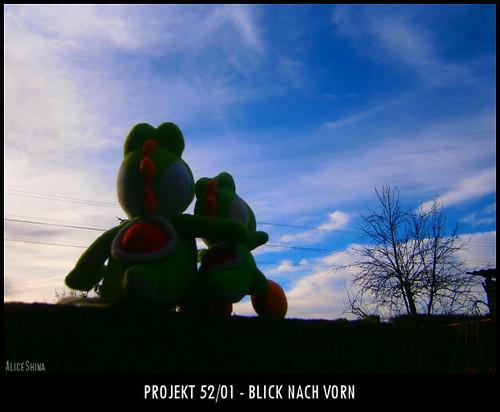Projekt 52/01 - Blick nach vorn