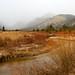 Horseshoe Park, RMNP