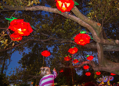 Lantern Festival.