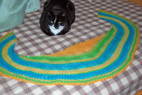 handspun knit shawl blocking to shape and cat