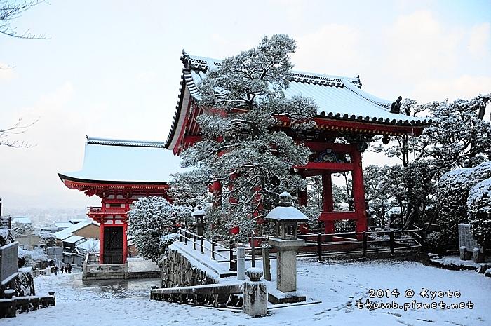 雪清水 (2).jpg