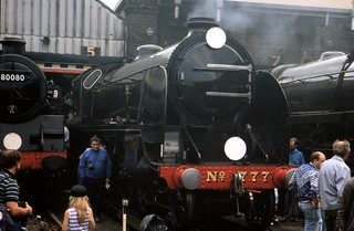 Brighton Steam - 777