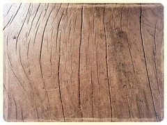 Patterns of Wood