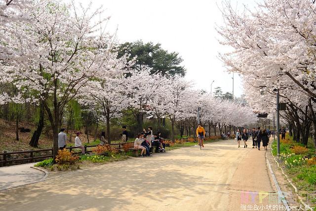 首爾林seoul forest (41)