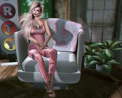 Sitting pretty…..