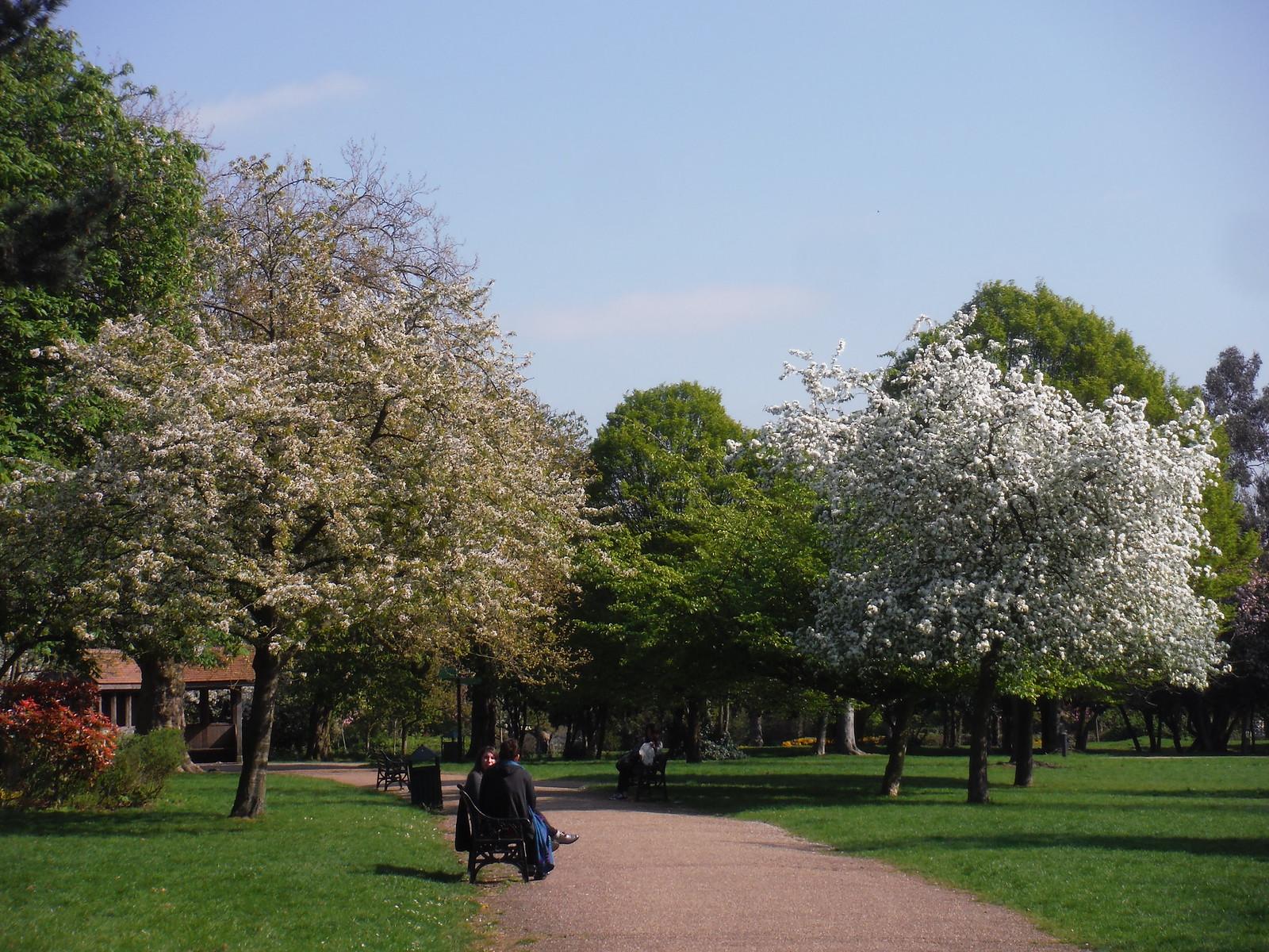 Path in Finsbury Park SWC Short Walk 26 - Woodberry Wetlands (Stoke Newington Reservoirs)