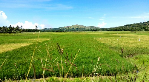 mountain philippines bohol vacation farm peace quiet blue sky clouds summer tourist fields rice racs smartphone upload