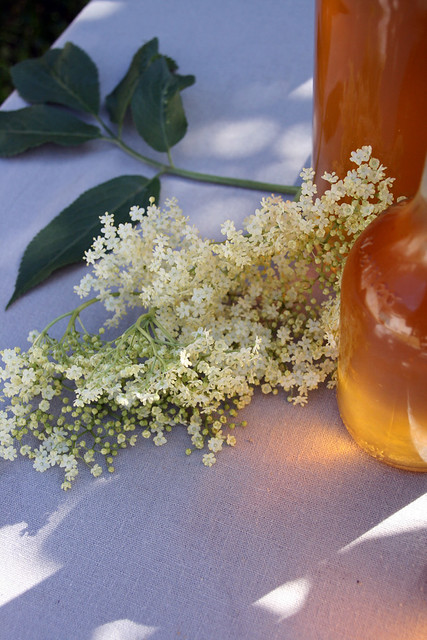 8957302862 c4085f475a z Elderflower cordial