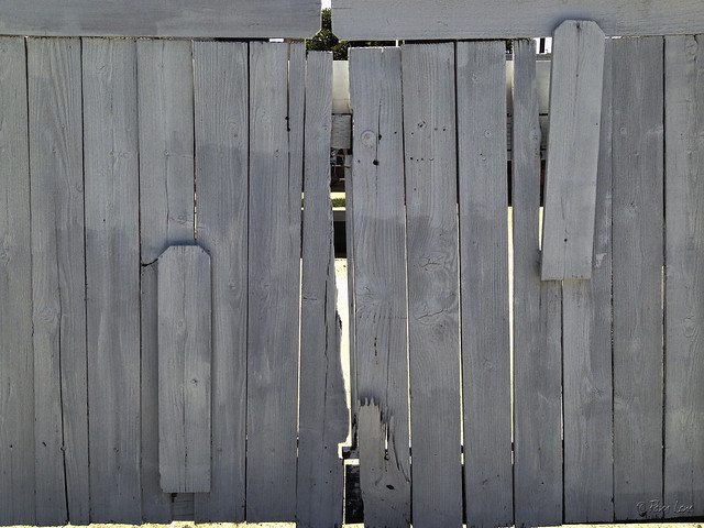 Whitewashed gate