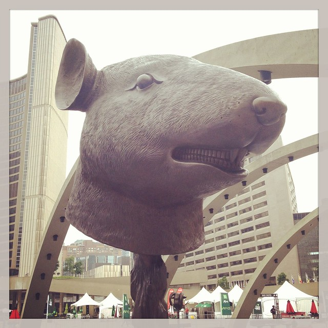 Al WeiWei Sculptures at Nathan Phillips Square