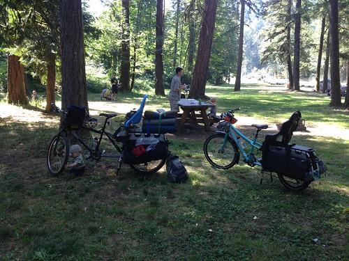 Campsite at Dodge Park