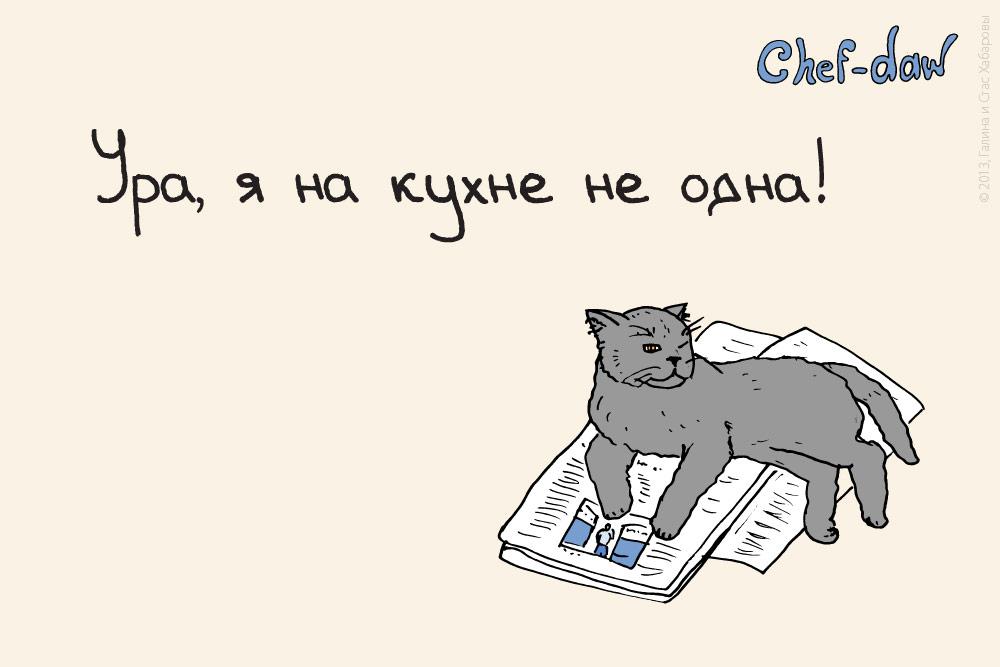 chef_daw_ura_yz_na_kuchne_ne_odna