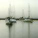 Early Morning Boats II