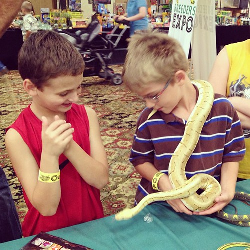 Becks speaking parseltongue with aiden at Reptile Expo  #manhattanks