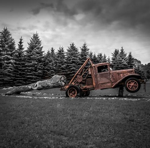 Wisconsin Logger