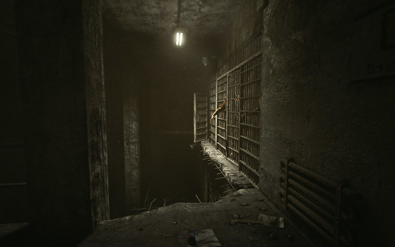 Outlast-review (4)
