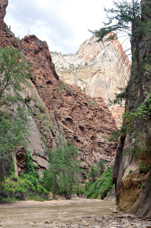 Zion National Park #18