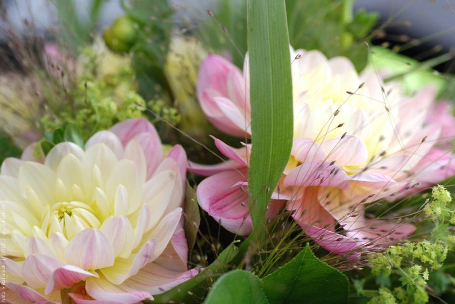 Blumentag... Mein Sohn hatte Geburtdstag.