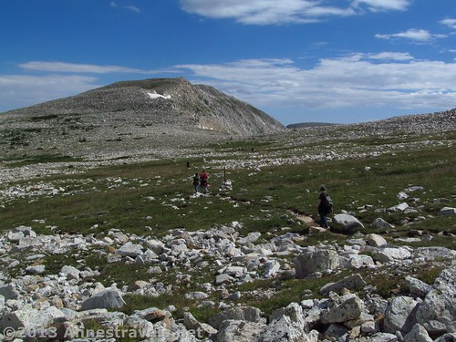 Hiking across the tundra, fairly quickly after the trail begins to flatten out a bit, Medicine Bow Peak Loop Trail, Medicine Bow National Forest, WY